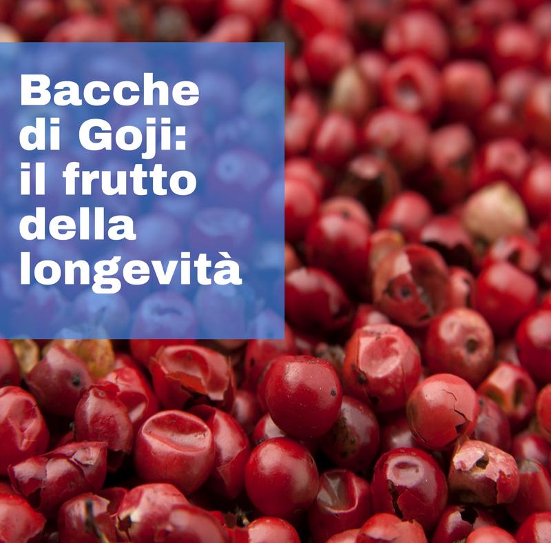 Bacche di Goji: il frutto tibetano della longevità.